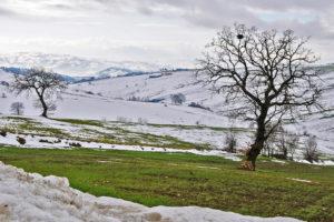 Nicola Faiocco | Paesaggio sannita | Pesco Sannita