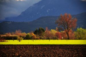 Nicola Falocco | All'imbrunire | San Bartolomeo in Galdo