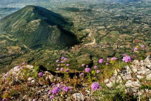 Roberto Gaetano | Valle Telesina Mont'erbano | San Lorenzello