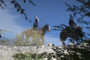 Adriana Gallinella | Cavalli | Cusano Mutri